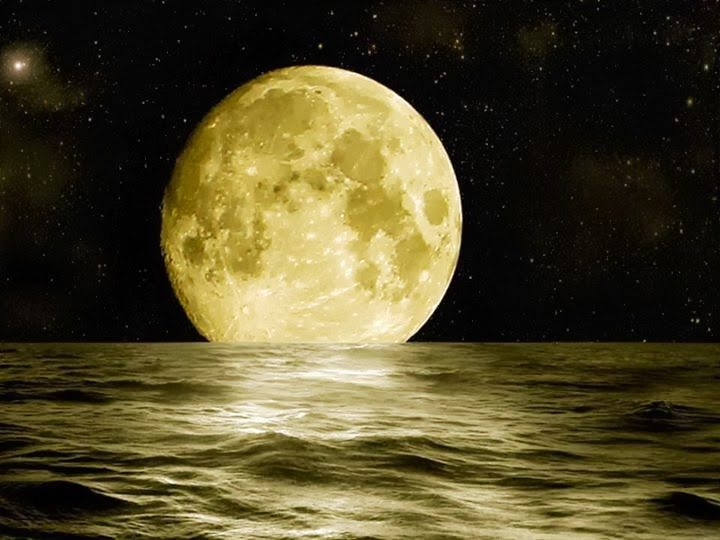 The moon may tug your heartstrings, but its tidal effect on the human body is negligible.