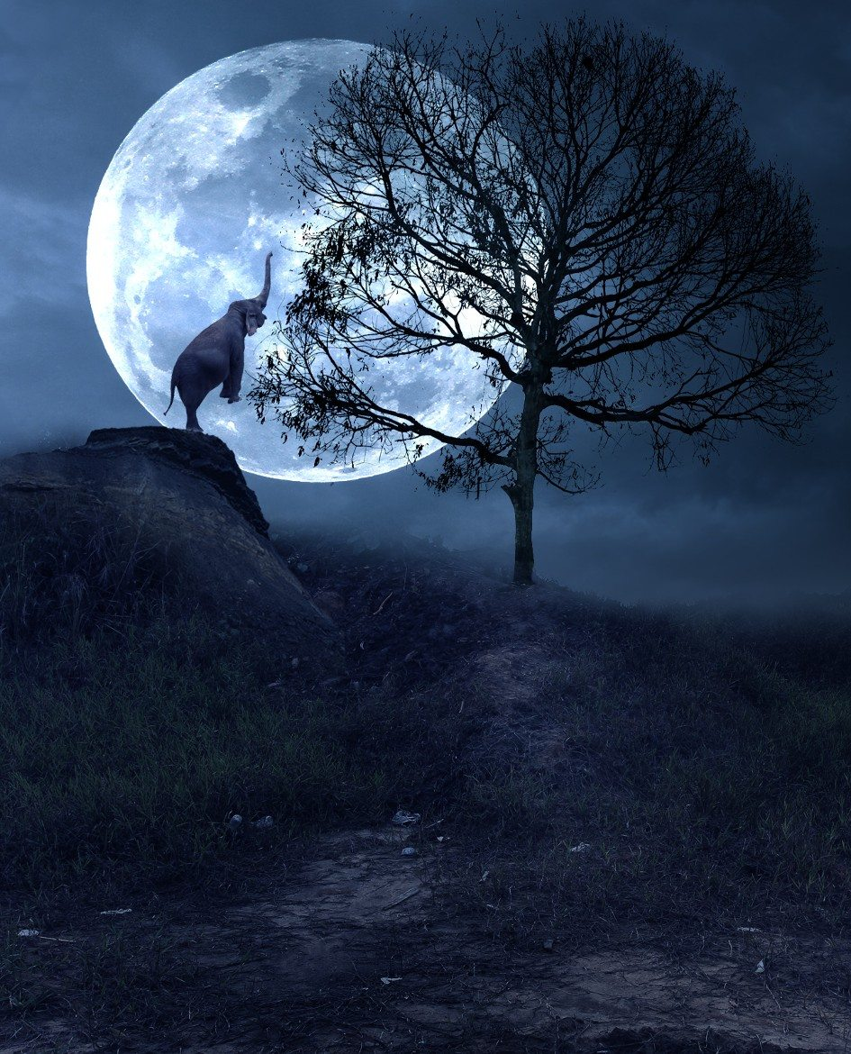 Full Moon December 2017 >> The Moon and the ElephantMoonipulations